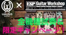ESP-GWS-WALRUS-2016-505