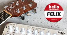 GRACE design felix,DPA d:vote VO4099G,アコギマイク,アコースティックギター,マイキング,アンプリファイ,増幅,ピックアップ,アコギピックアップ,マグネティックピックアップ,ピエゾピックアップ,アコギプリアンプ,アコギピックアップ音質,アコースティックギターミキサー